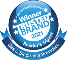 Trusted brand 2021